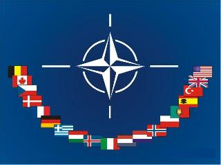 NATO Flag and Members' Flags